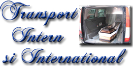 transport intern si international